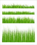Green grass. Field pattern background Royalty Free Stock Photos