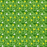 Green grass field with small flower seamless vector for pattern and background Stock Photography