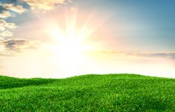 Green grass field on small hills. And blue sky with clouds. 3d illustration Stock Images