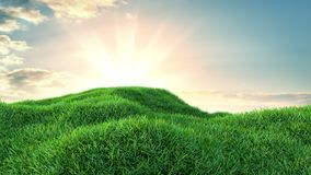 Green grass field on small hills. And blue sky with clouds. 3d illustration Stock Photography