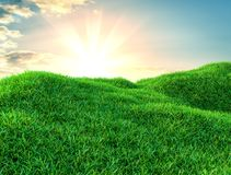 Green grass field on small hills and blue sky with clouds. 3d illustration Stock Photos