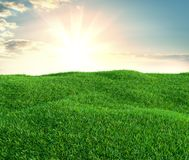 Green grass field on small hills and blue sky with clouds. 3d illustration Royalty Free Stock Photo