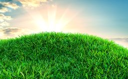 Green grass field on small hills. And blue sky with clouds. 3d illustration Royalty Free Stock Photography