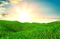 Green grass field on small hills. And blue sky with clouds. 3d illustration Royalty Free Stock Photo