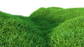 Green grass field on small hills, isolated. On white background. 3d illustration Royalty Free Stock Images