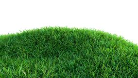Green grass field on small hills, isolated. On white background. 3d illustration Stock Image