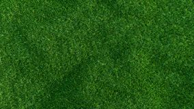 Green grass field on small hills, isolated. On white background. 3d illustration Royalty Free Stock Image