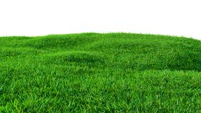 Green grass field on small hills, isolated. On white background. 3d illustration Royalty Free Stock Photos