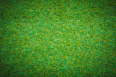 Green grass field sport background idea concept Royalty Free Stock Image