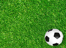 Green grass field sport background idea concept Stock Photography
