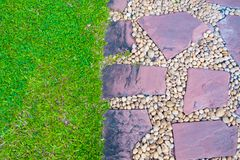 Green grass field with stone pathway and small rock decoration. Nature background Stock Image