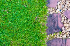 Green grass field with stone pathway and small rock decoration. Nature background Royalty Free Stock Photo