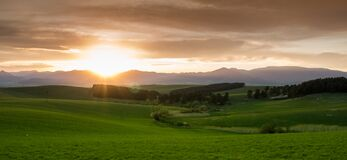 Green Grass Field during Sunset Stock Photography