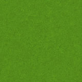 Green Grass Field Texture Royalty Free Stock Photography