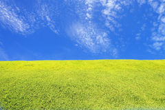 Green grass field under blue sky Royalty Free Stock Photos