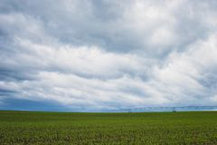 Green Grass Field Under Cumulonimbus Clouds Royalty Free Stock Images
