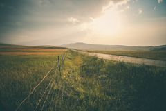 Green Grass Field Under White Sky Royalty Free Stock Images
