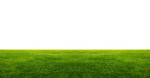 Green grass field with white copyspace