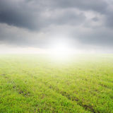 Green Grass fields and rainclouds for outdoor background. Stock Photos