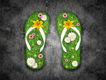Green grass Flip-flops Stock Photography