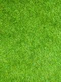 Green grass floor texture stock image