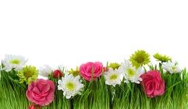 Green grass flower frame Royalty Free Stock Photos