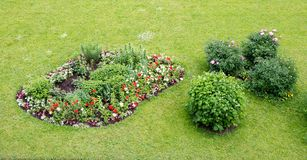 Green grass with flowered bed Stock Images