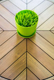 Green grass in flowerpot on picnic table Stock Photo