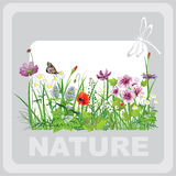 Green grass and flowers. Landscape natural, banner in vector art royalty free illustration
