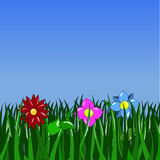 Green grass and flowers. On a blue background Stock Illustration