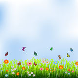 Green grass, flowers and butterflies. Vector illustration Royalty Free Stock Images