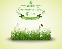 Green grass with flowers and butterflies  background for world environment day. Illustration of Green grass with flowers and butterflies  background for world Stock Image