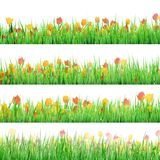 Green grass with flowers isolated. EPS 10 Stock Photo