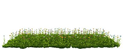 Green grass with flowers. isolated on white background 3d render. Ing Stock Image