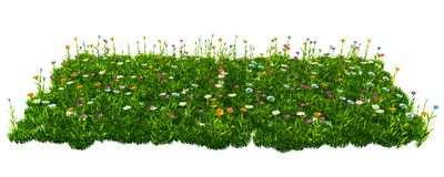 Green grass with flowers. isolated on white background 3d render. Ing Stock Photography