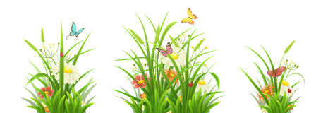 Green grass and flowers set. Spring grass, flowers and butterflies,  vector illustration set Royalty Free Stock Photo