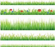 Green grass and flowers vector set Royalty Free Stock Photo