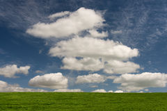 Green grass. Fluffy white clouds over green grass pasture Royalty Free Stock Image