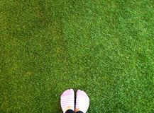 Green. Grass foot bg background space texture Royalty Free Stock Photos