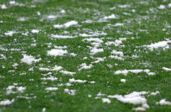Green grass on a football soccer field Royalty Free Stock Photos