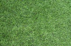 Green grass Football/soccer field Stock Image