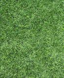 Green grass Football/soccer field Stock Photos
