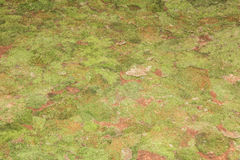 Green grass on a football soccer field with a torn piece of cove Royalty Free Stock Photography