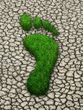 Grass footstep on cracked earth royalty free stock image
