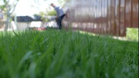 Green grass in the foreground and man with lawn mower approaching in the background. Low angle shot.  stock video footage