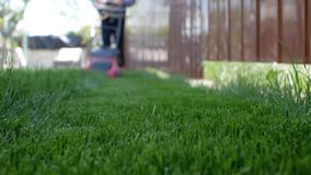 Green grass in the foreground and man with lawn mower approaching in the background. Low angle shot.  stock video