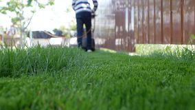 Green grass in the foreground and a man with a lawn mower moving away in the background. Low angle shot.  stock footage
