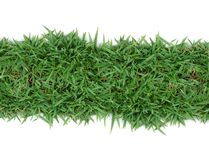 Green grass frame. Green grass on white background Royalty Free Stock Photography