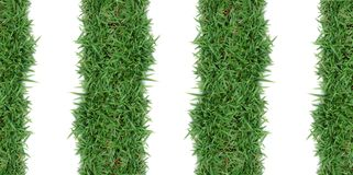 Green grass frame. Green grass on white background Stock Photos