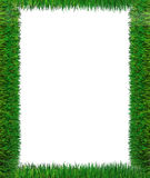 Green Grass Frame. A beautiful green grass frame vector illustration